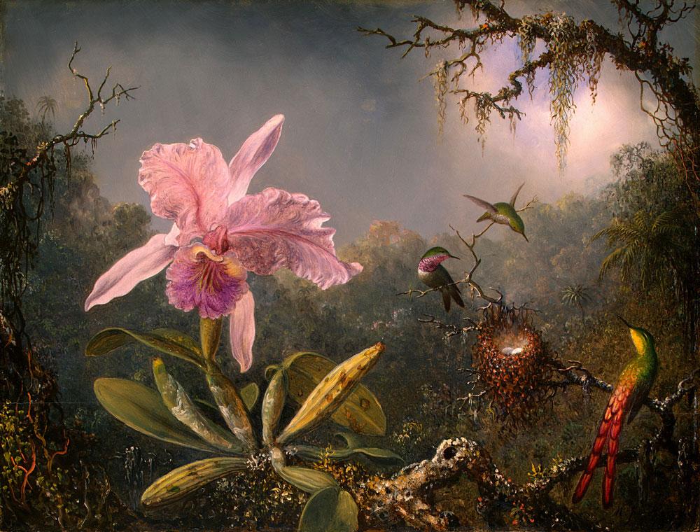 Martin_Johnson_Heade-Cattleya_Orchid_and_Three_Brazilian_Hummingbirds.jpg