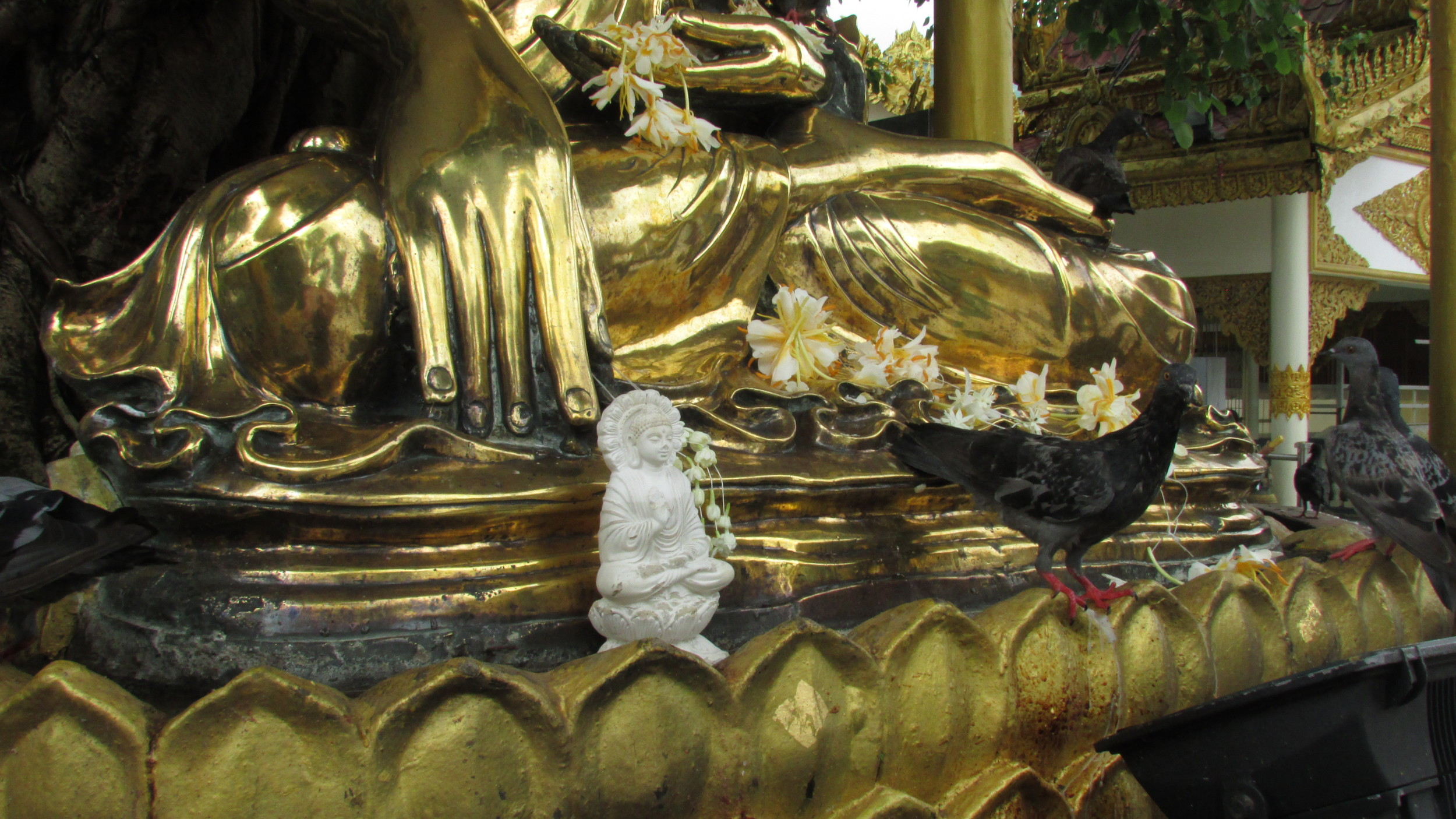 Pigeon feet and Buddha foot, Shwedagon Pagoda.