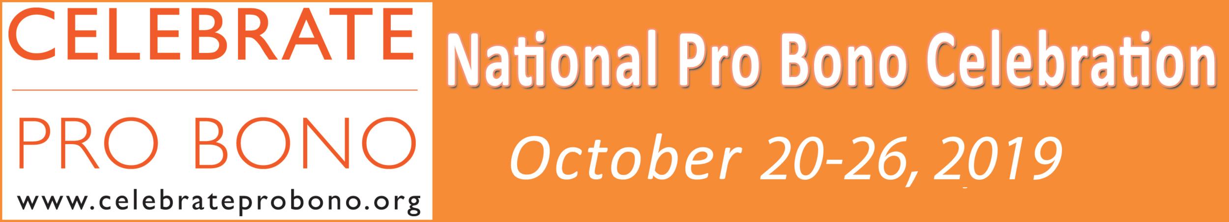 pro-bono-website-banner.png