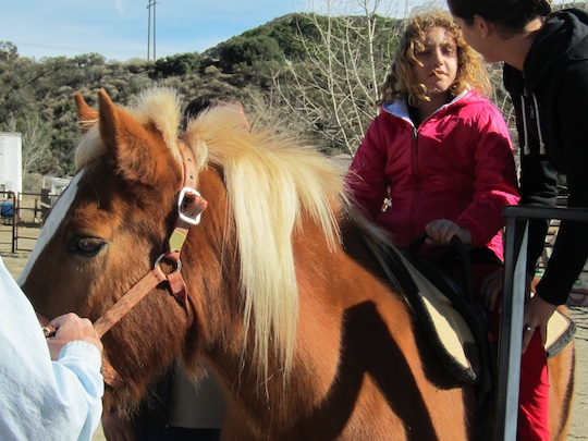 Katie talking to Jani on horse SMALL.jpg