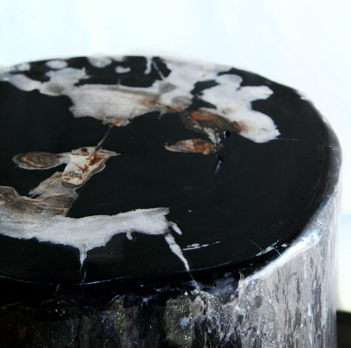 Copy of Petrified Wood Table (1)