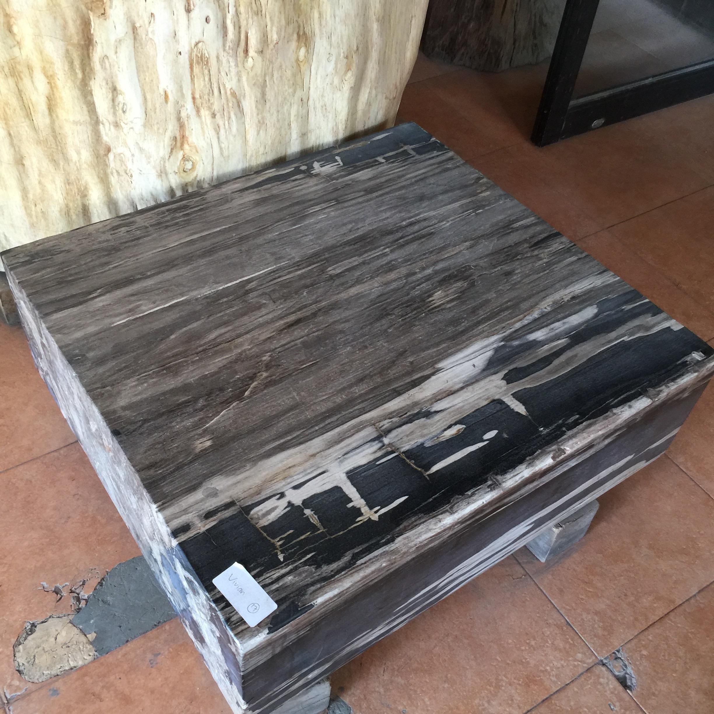 Copy of petrified wood coffee table