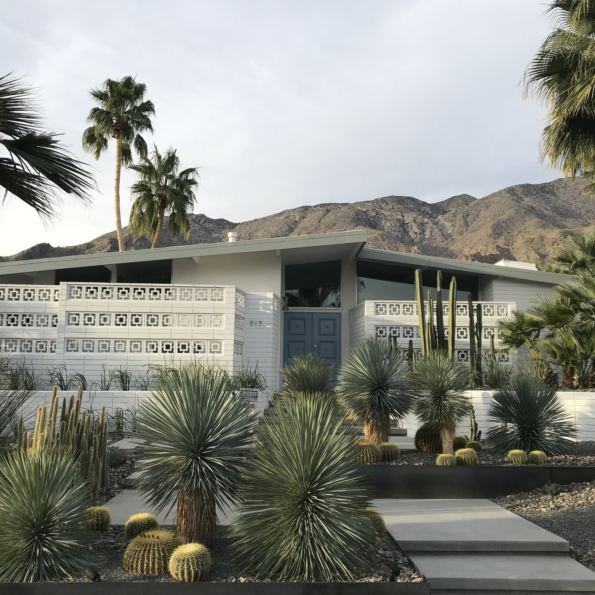 bungalow and cacti. Blue Moon furniture store winnipeg. Architectural tour palm springs.JPG