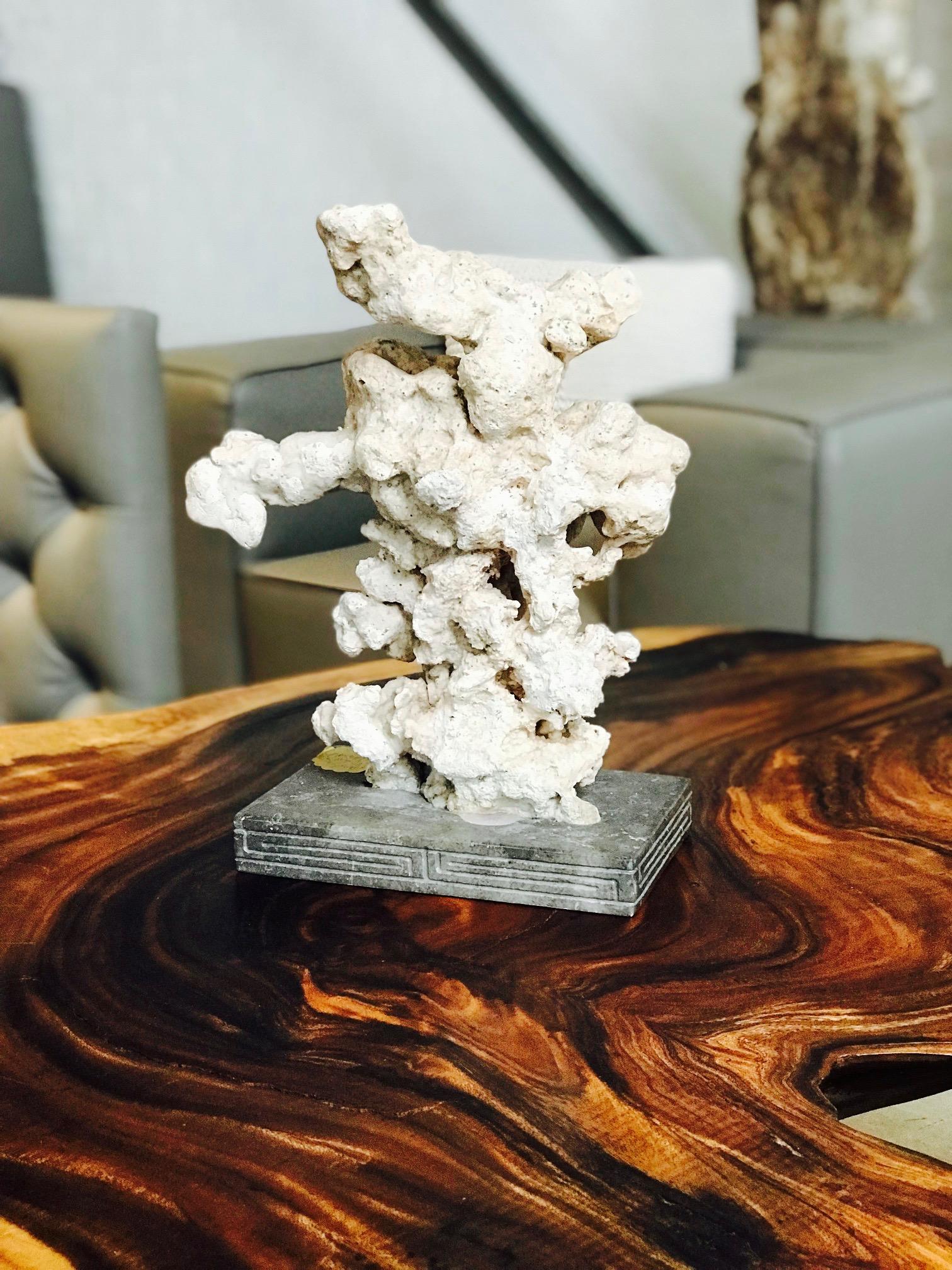 stalagmite and live edge single slice table. blue moon furniture store in winnipeg. home decor.jpg