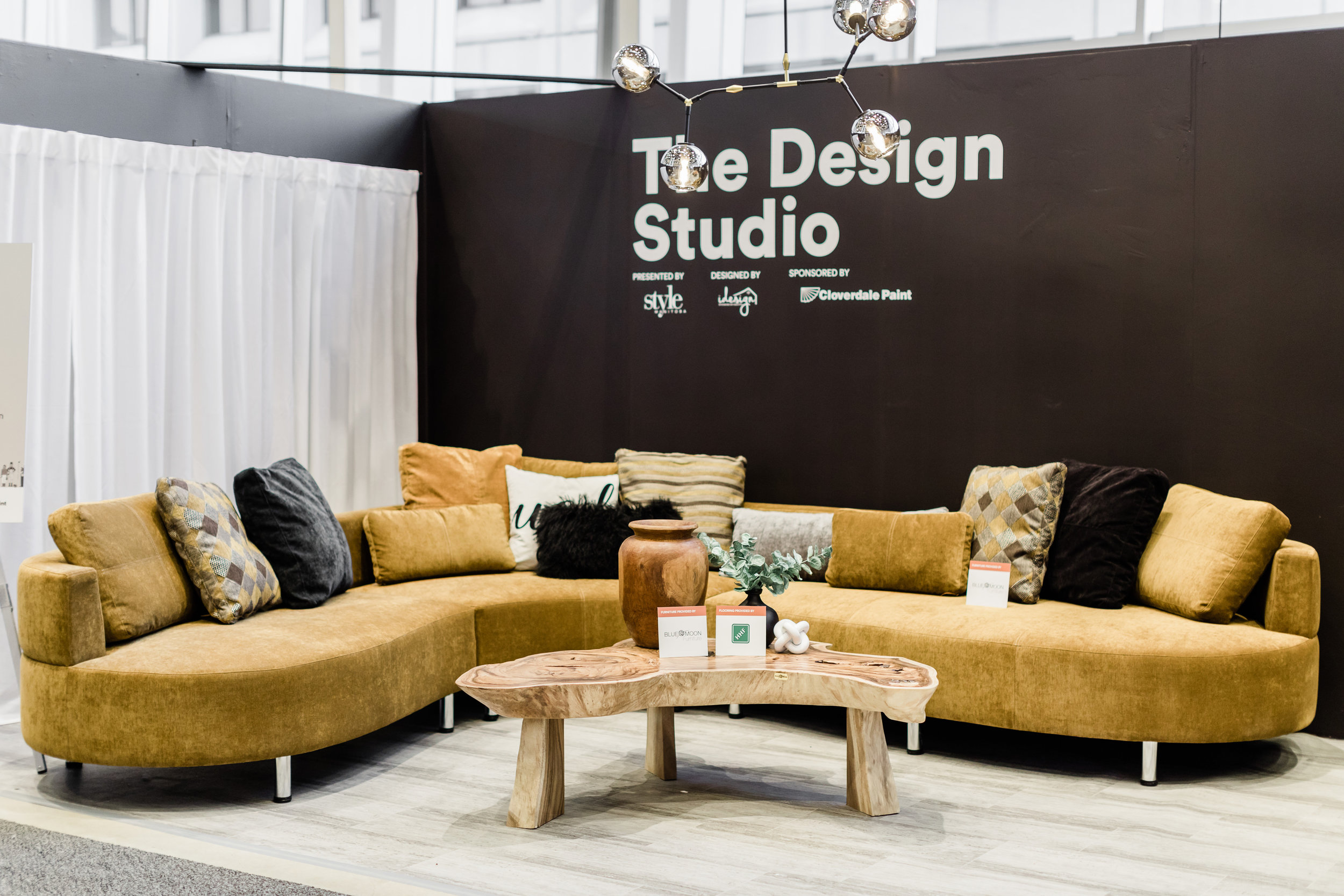 winnipeg renovation show. The Design studio. Blue Moon Furniture. Bronze Cocoon 2 sectional.