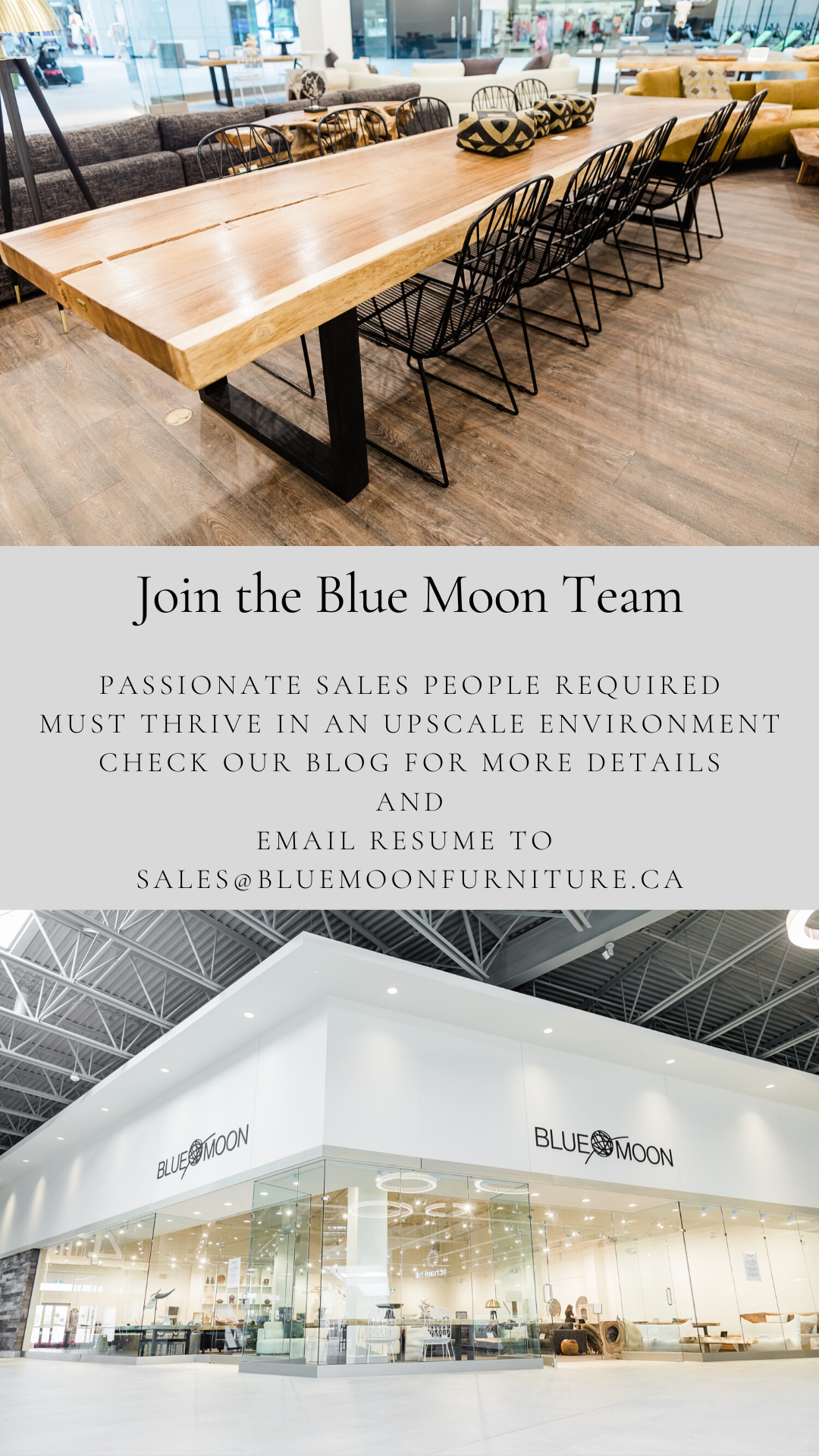 join the blue moon team