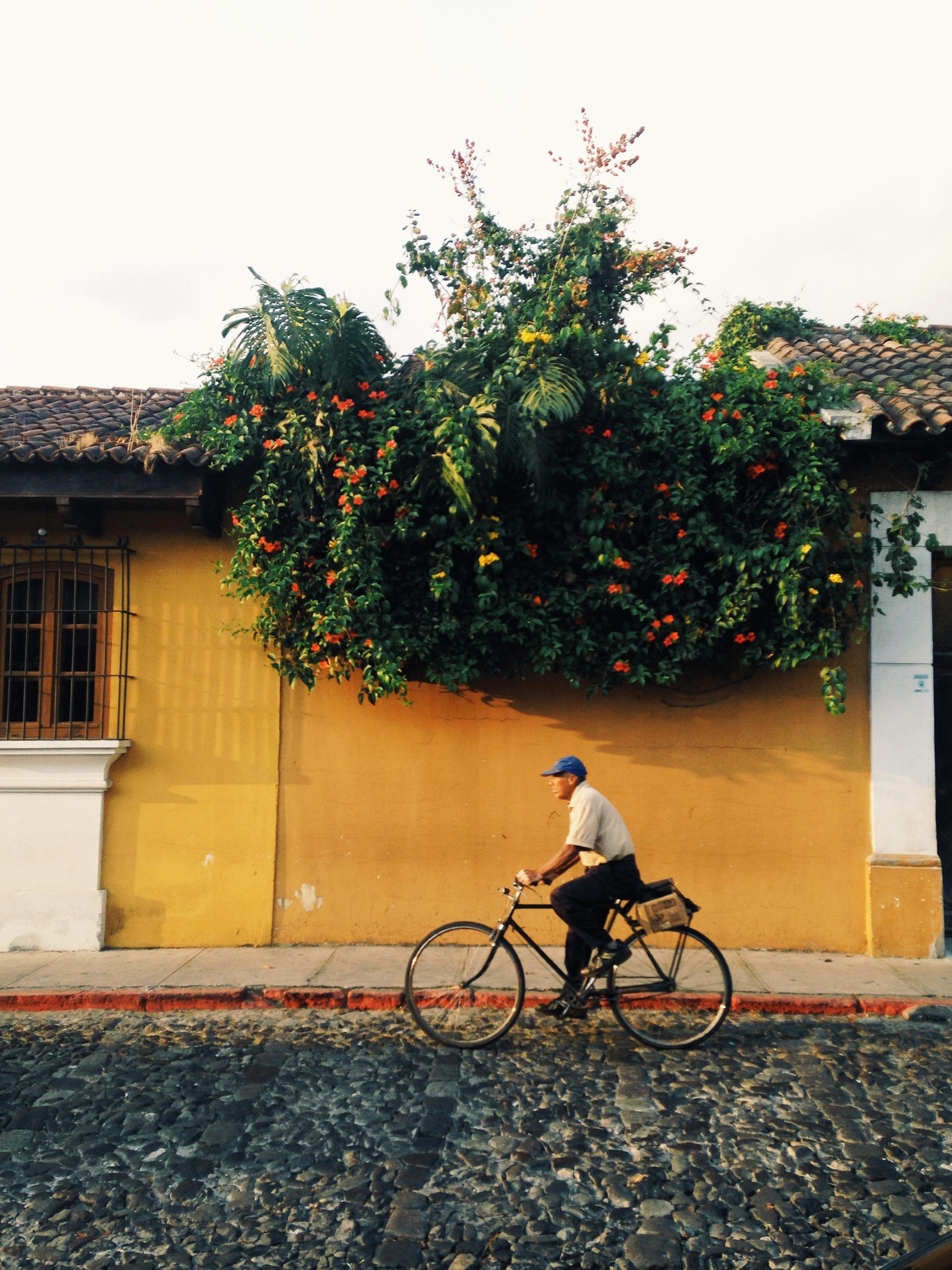 Captured in Antigua, Guatemala.