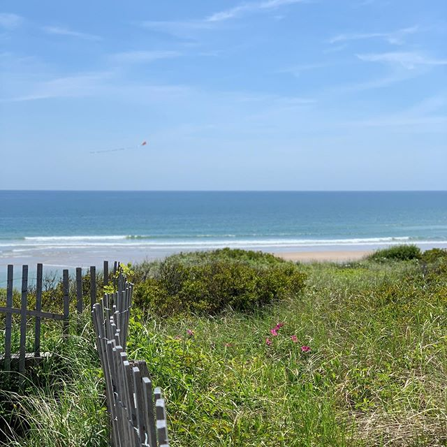 Summer at the Cape. Check out our story for a few more pics of our #ssstravels.  _________________________________________#steelestreetstudios #travel #summer #ssstravels #lobsta #beach #seaside #
