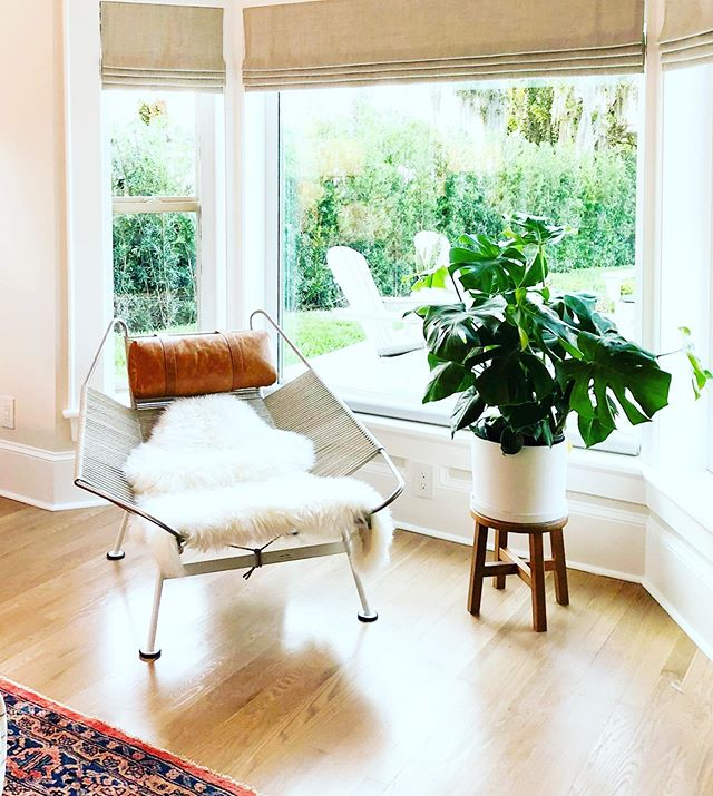 This looks like the perfect spot to cuddle up and read that book you promised yourself you would read this summer.  _________________________________________#thatchair #chairwiththefurr #readingnook #read #goodbook #chair #plant #monsterra #houseplant #interiordesign #steelestreetstudios #brynmawrproject