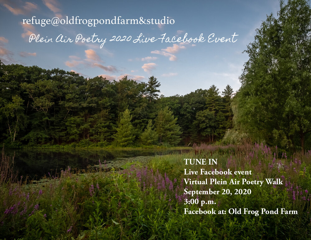 Is The Frog Pond Open On Christmas Day 2020 Poem of the Month — Old Frog Pond Farm & Studio