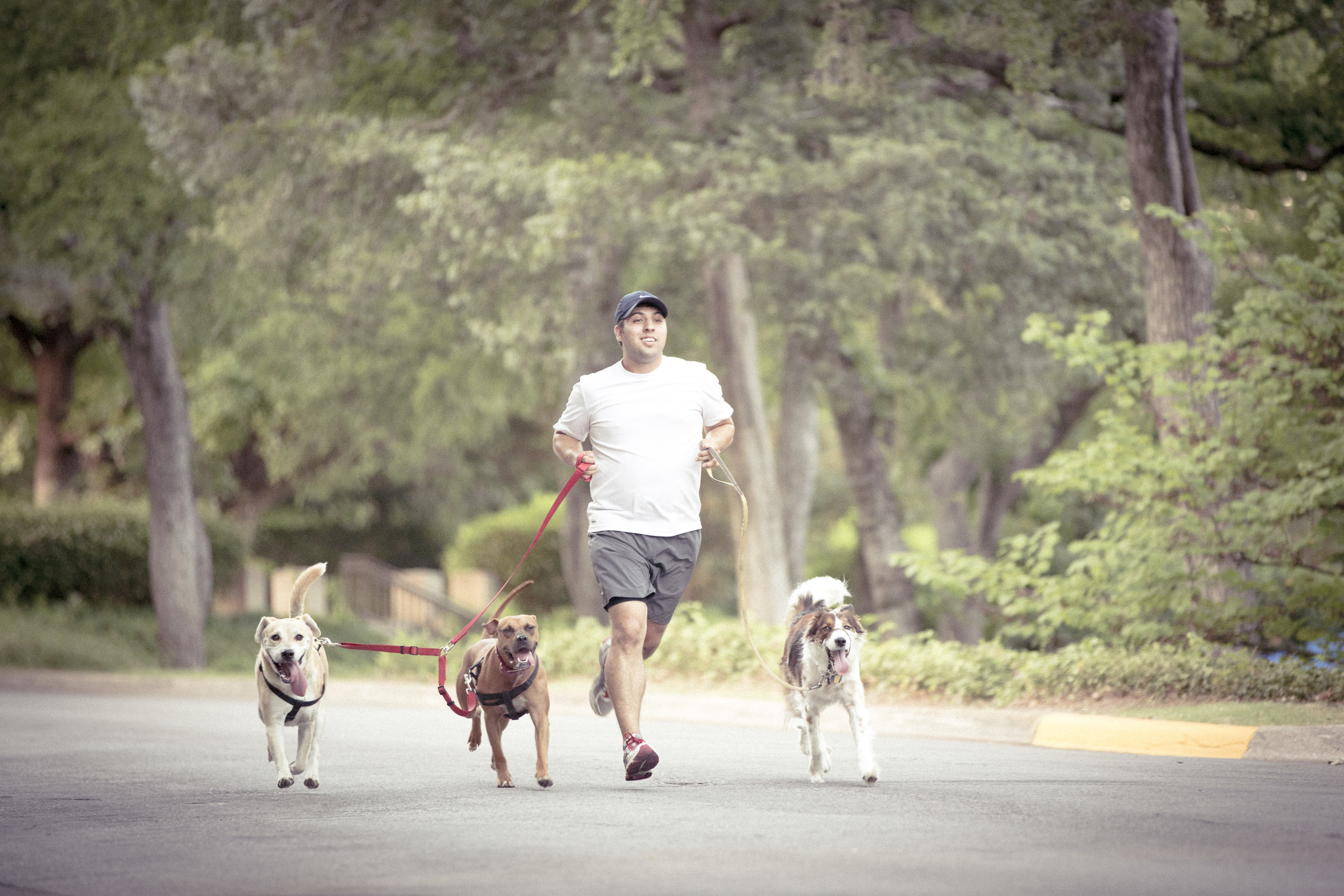 Running with the pack.