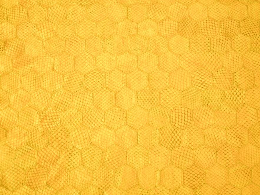 manta hexagonos amarelo ouro.jpg