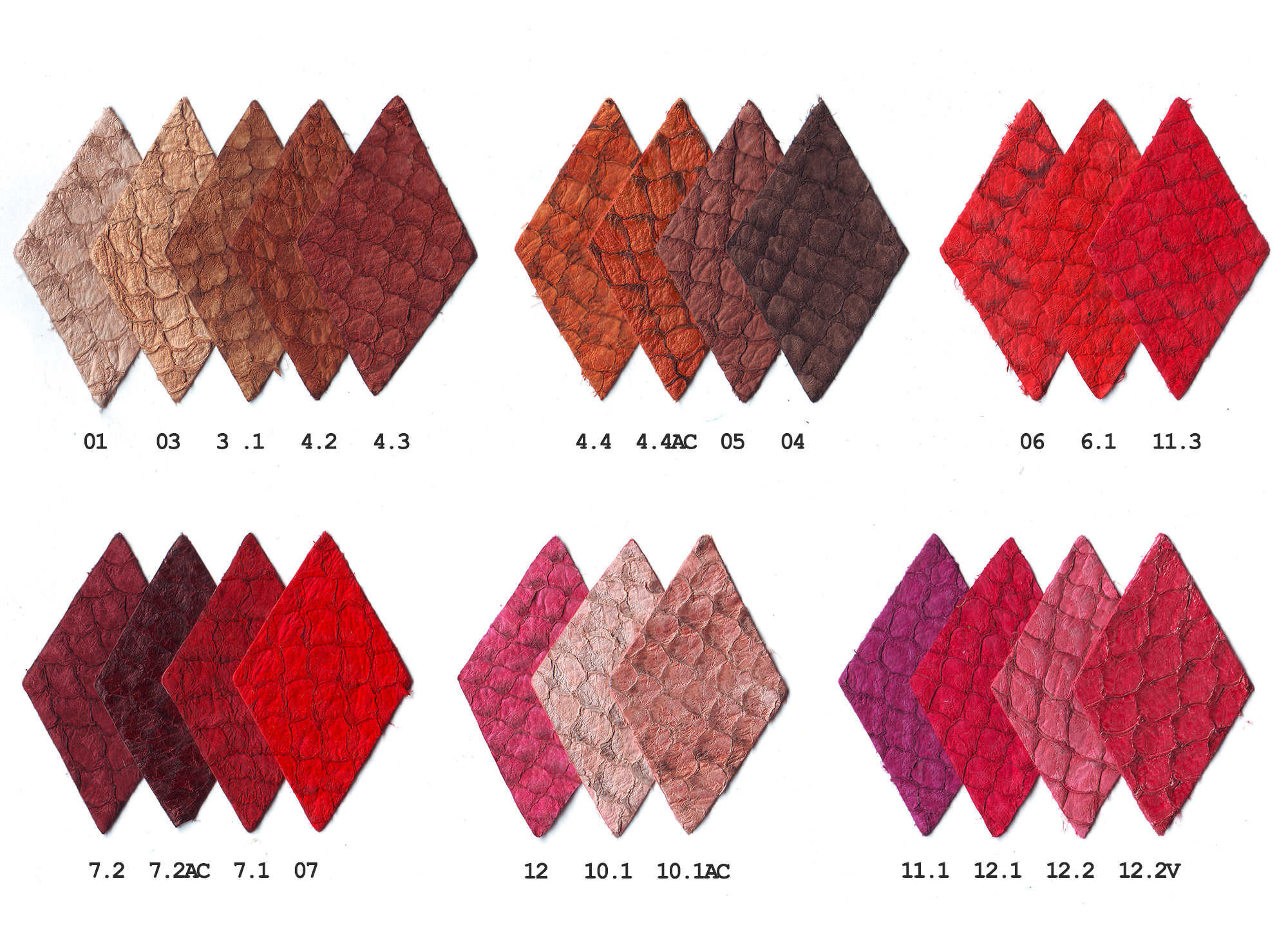 Cartela de cores I_2015.jpg