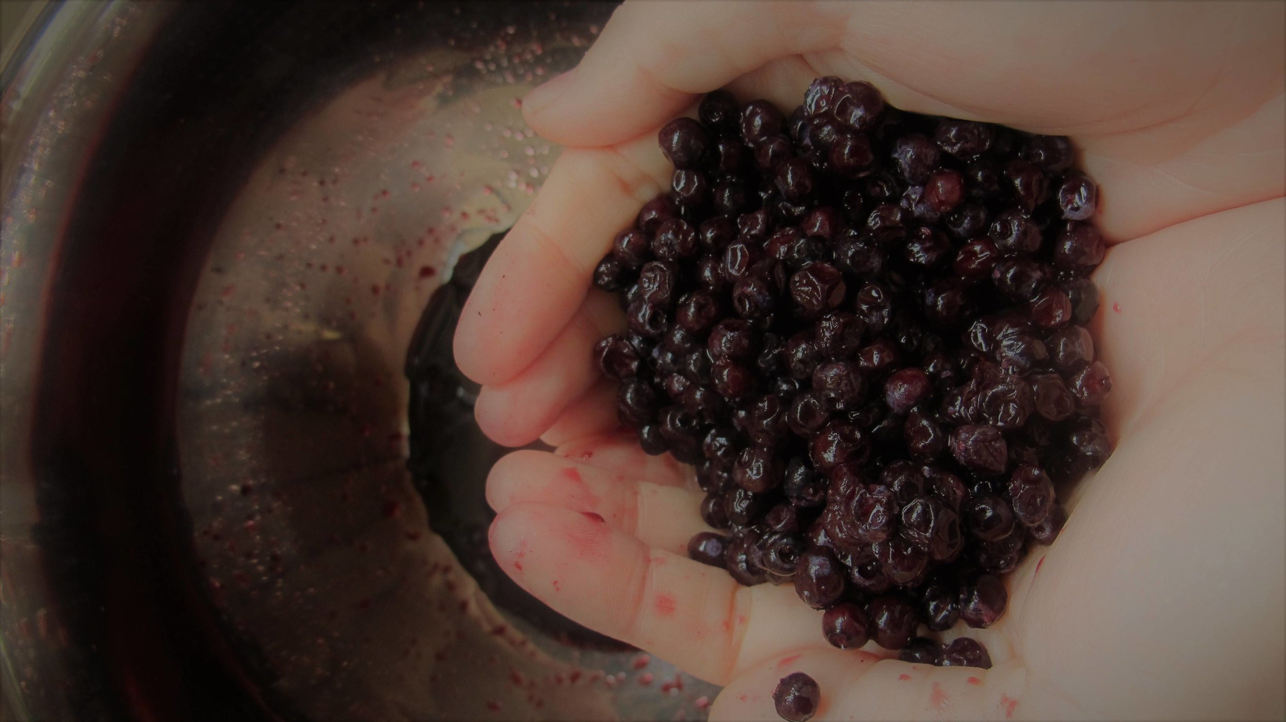Wild Blueberries -- The Ones I Know Well