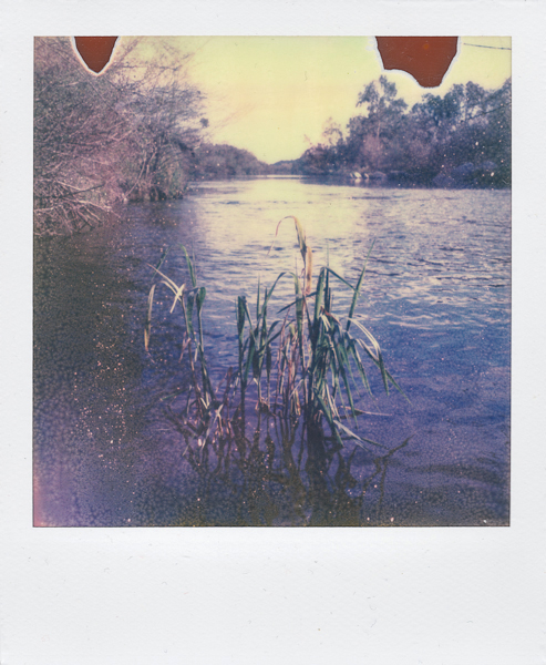 Polaroidsbook 7.jpg