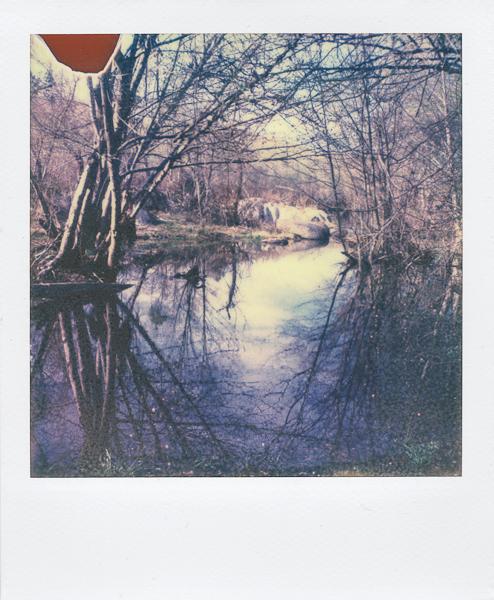 Polaroidsbook 12.jpg