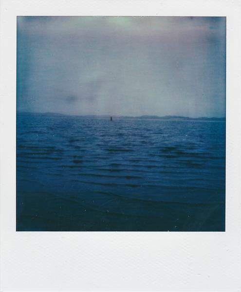 Polaroidsbook 50.jpg