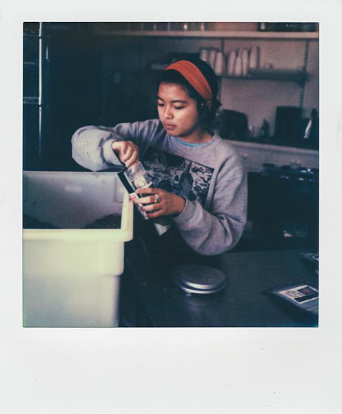 Polaroidsbook 447.jpg