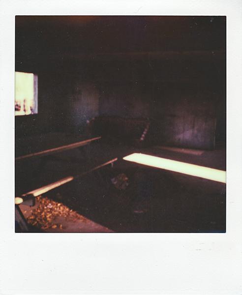 Polaroidsbook 433.jpg
