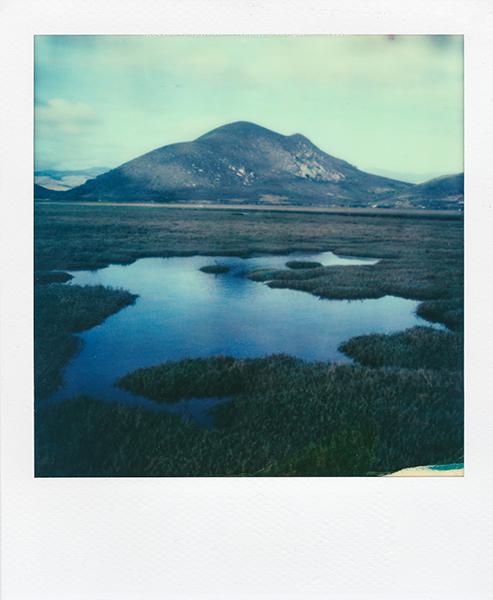 Polaroidsbook 37.jpg