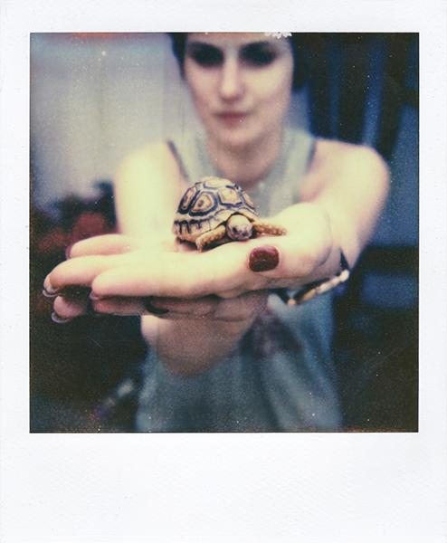 Polaroidsbook 70.jpg