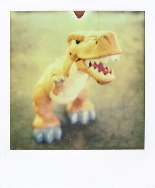 Polaroidsbook 121.jpg