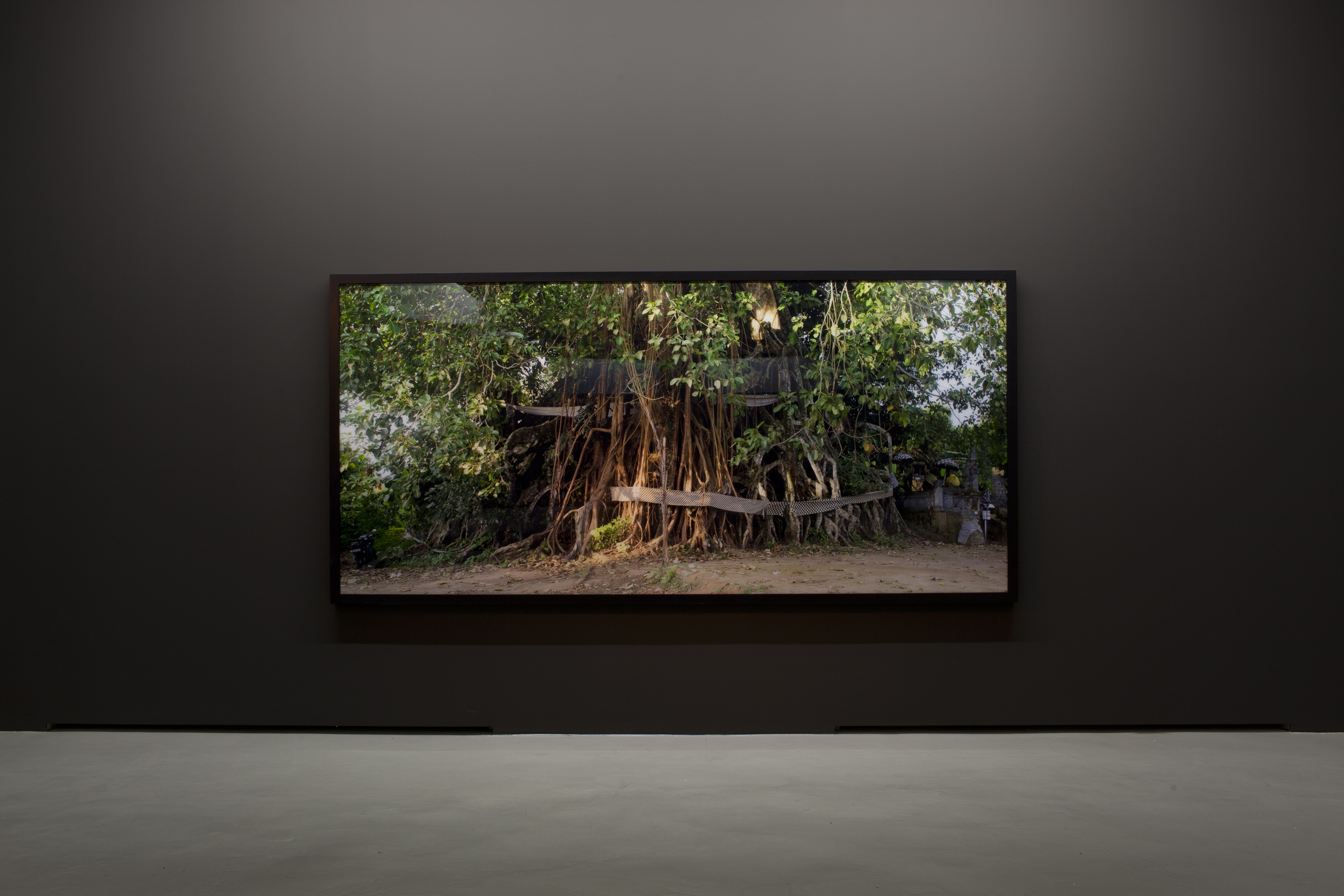 Ritual, death and incantation;  here:  Holy Tree  2011 ,  150 x 320 cm; collection Museum DKM, Duisburg/Germany