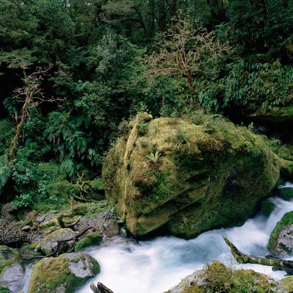 NZriver2.jpg