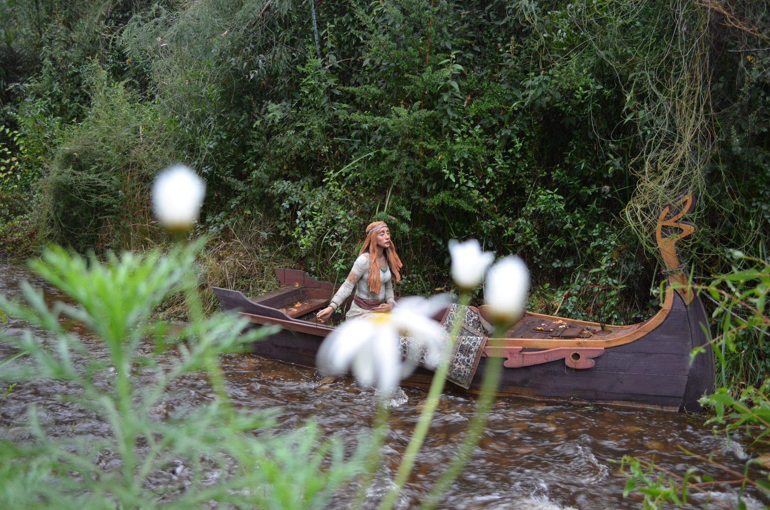 The famous Lady of Shalott