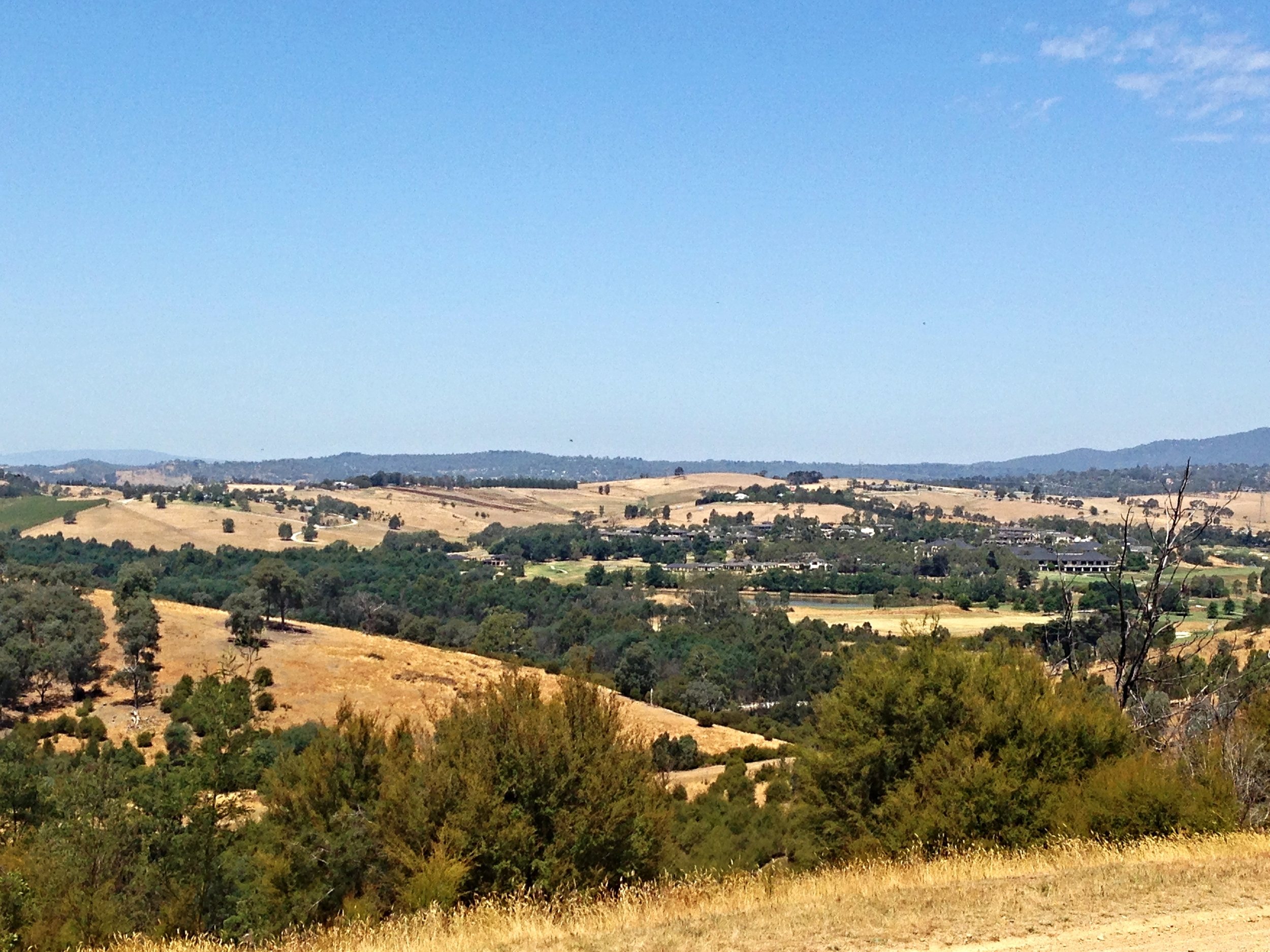 The view from the top: the surrounding Yarra Valley region.
