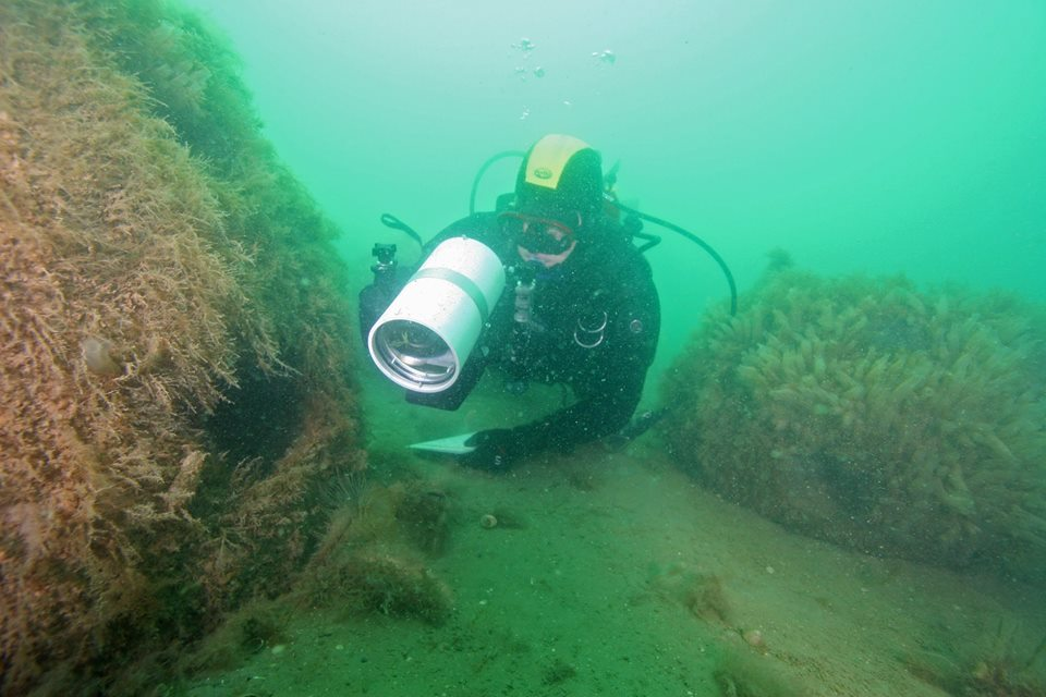 PhD student, Kade Mills, surveys one of our bay's artifical reefs.