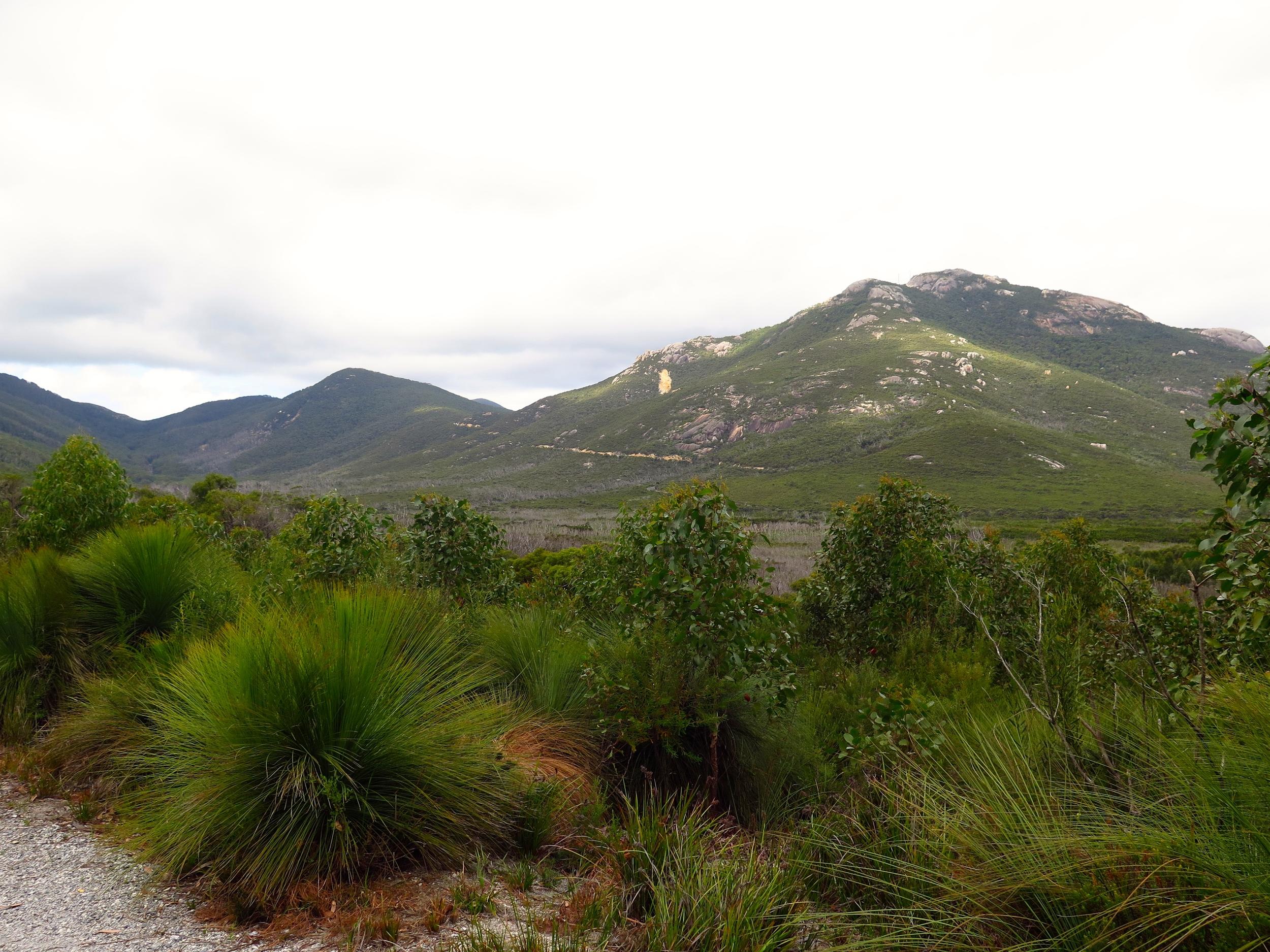 The spectacular Mount Oberon. Photo: Cathy Cavallo