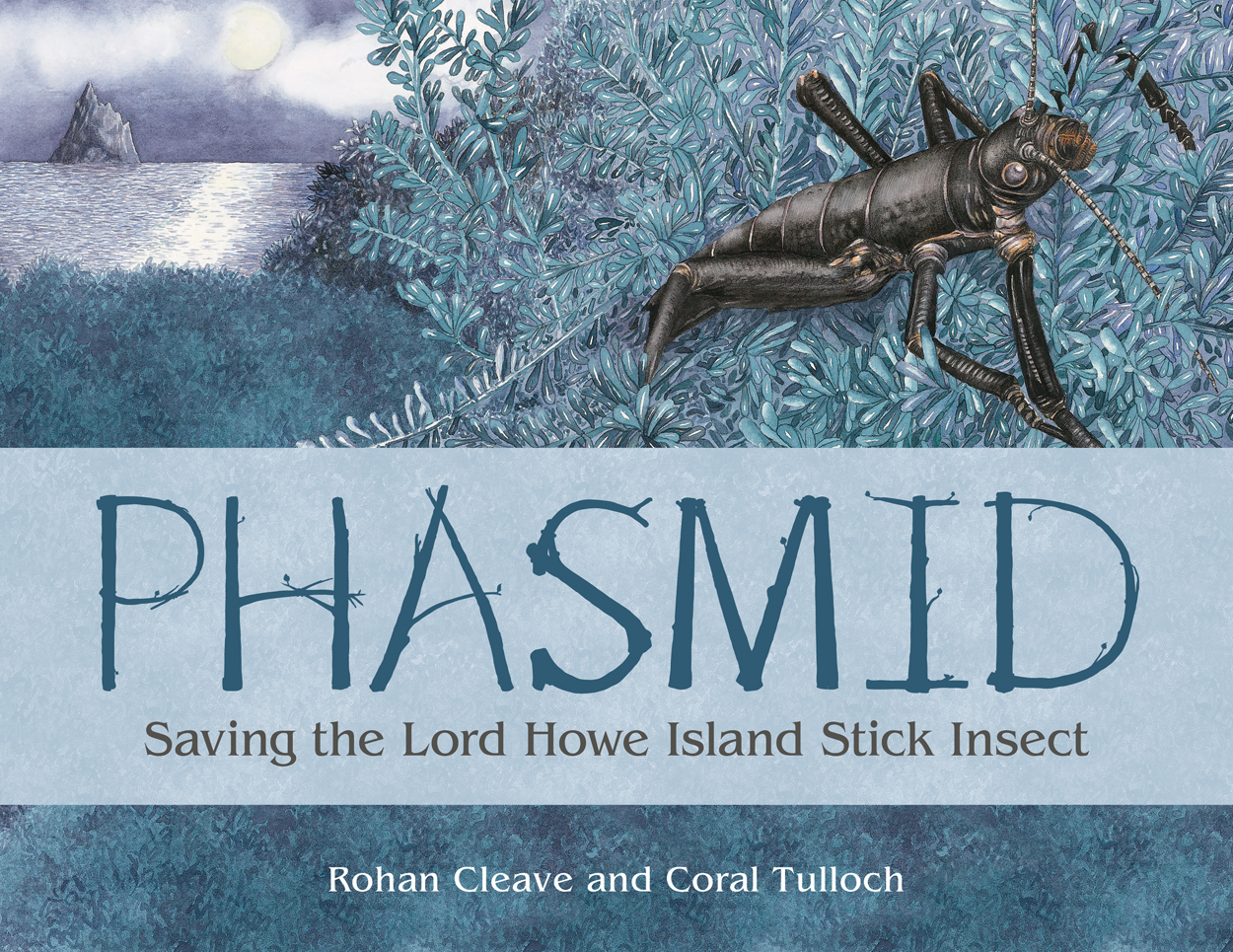 The striking front cover image produced by Coral Tulloch.  Image courtesy of CSIRO Publishing.