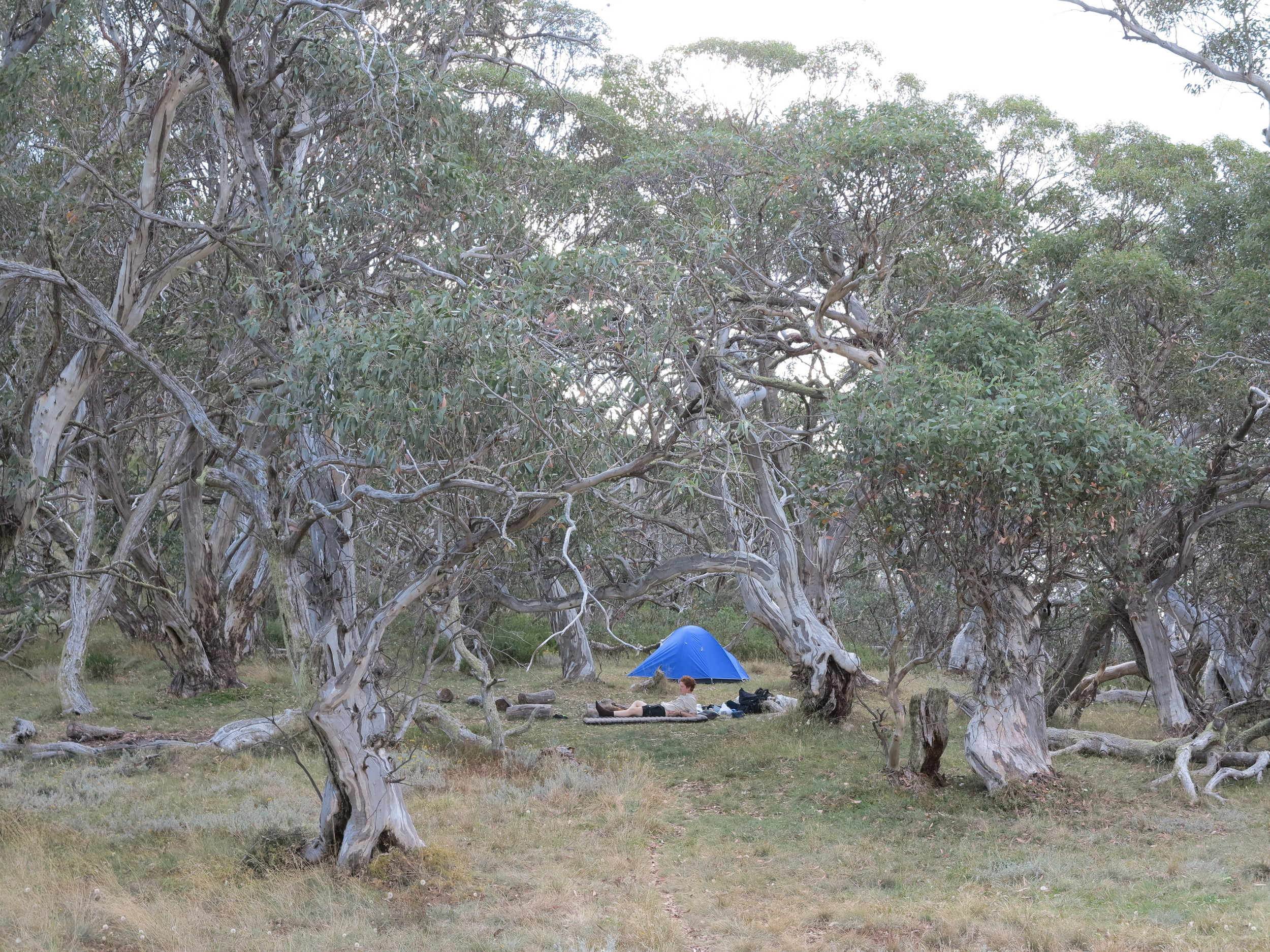 The campsite at Mt Magdala. Photo: Alex Mullarky