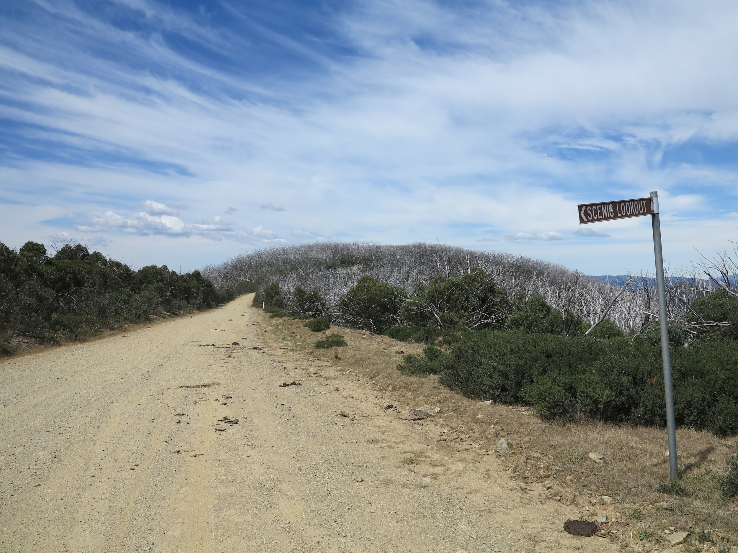 The Licola-Jamieson road. Photo: Alex Mullarky