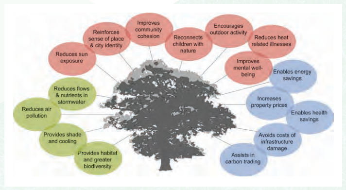 The benefits of urban trees. Source: City of Melbourne Urban Forest Strategy