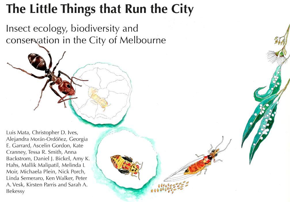 The Little Things that Run the City, Mata et al. 2016.  Artwork: Kate Cranney