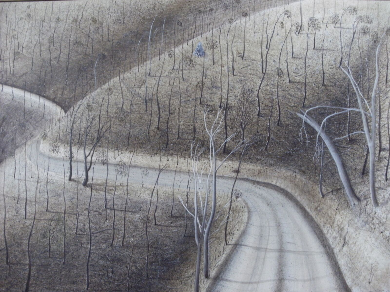 'Road to Dunmoochin',  Mark Wotherspoon .