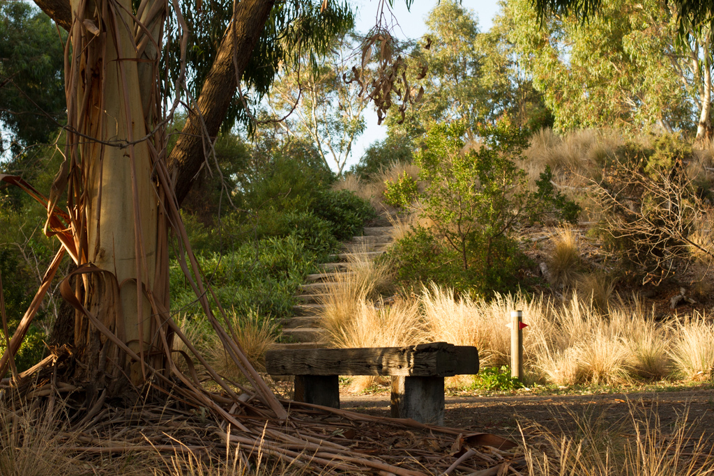 Westgate Park is the perfect place for a quiet stroll or to discover some of our rarest indigenous plants.  Image: Lyn Allison