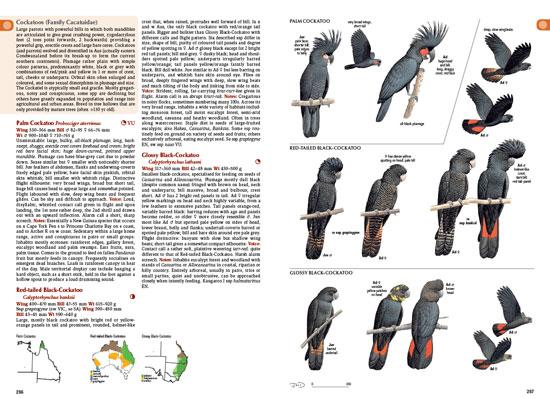 Image: CSIRO Publishing / Andrew Isles Natural History Books