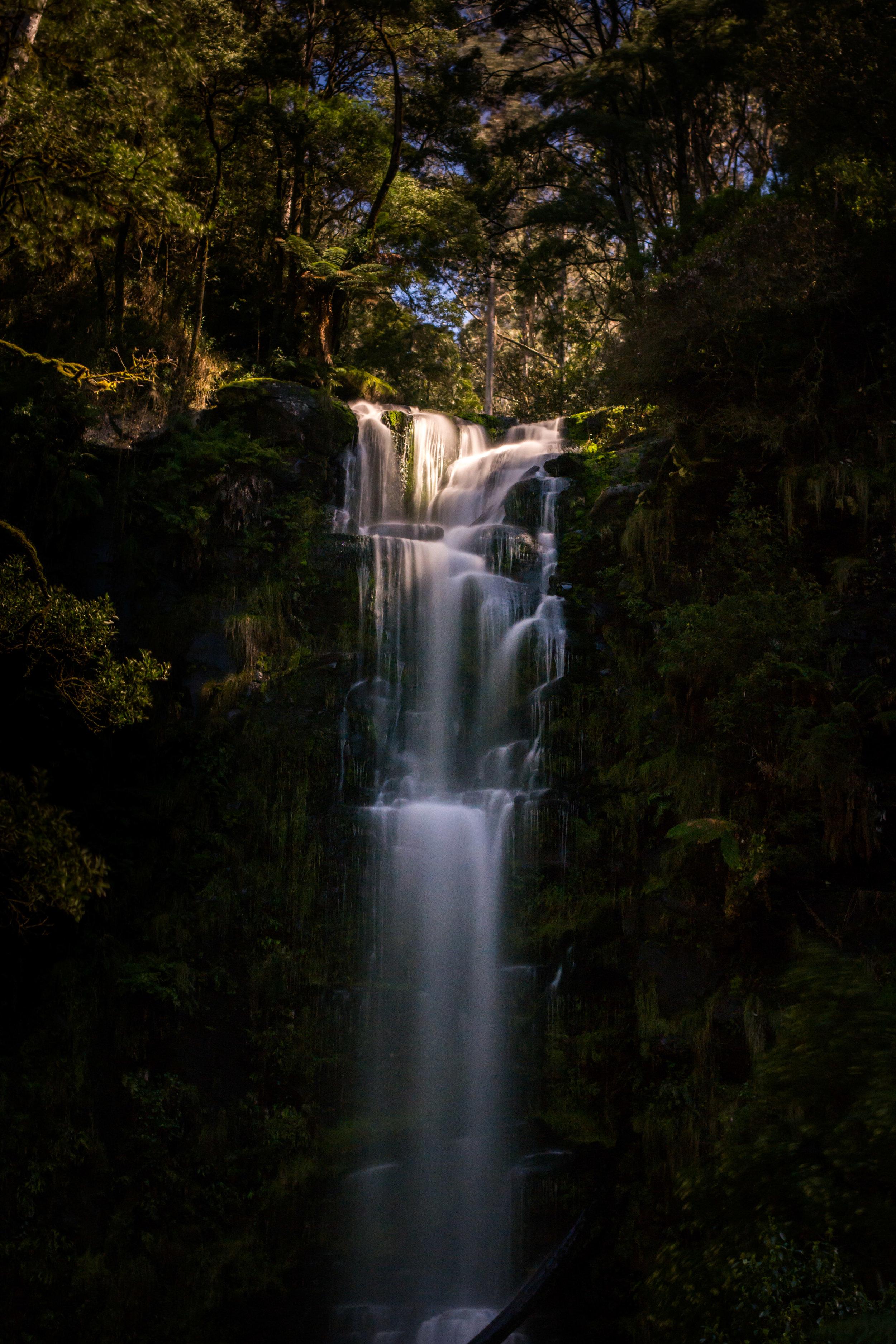 Erskine Falls, Lorne. Photo: Tim Brown