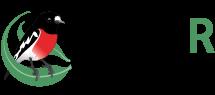 BioR_Logo3.png