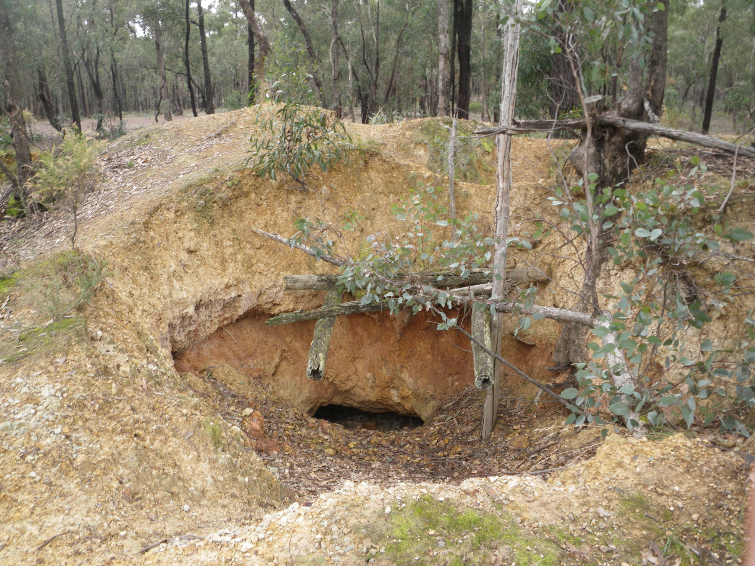 Miners quickly descended on (and under) Victoria's box-ironbark country during the middle of the 1800s following the discovery of gold. Evidence of their activity can still be readily seen today. Image: Rowan Mott