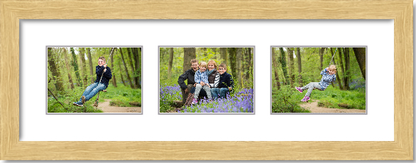 This is a computer generated image of the contemporary lifestyle frame which the family ordered.