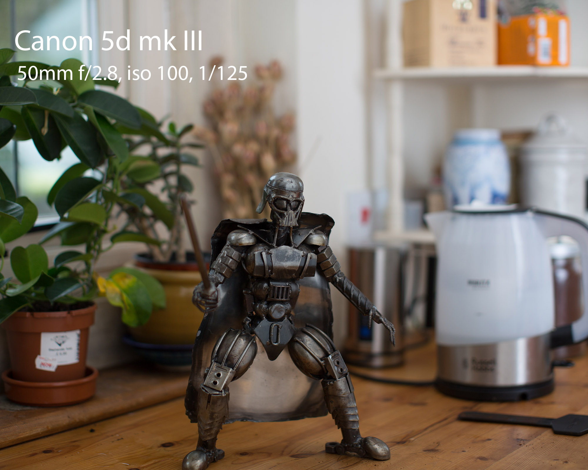 Canon 5d mk3.jpg