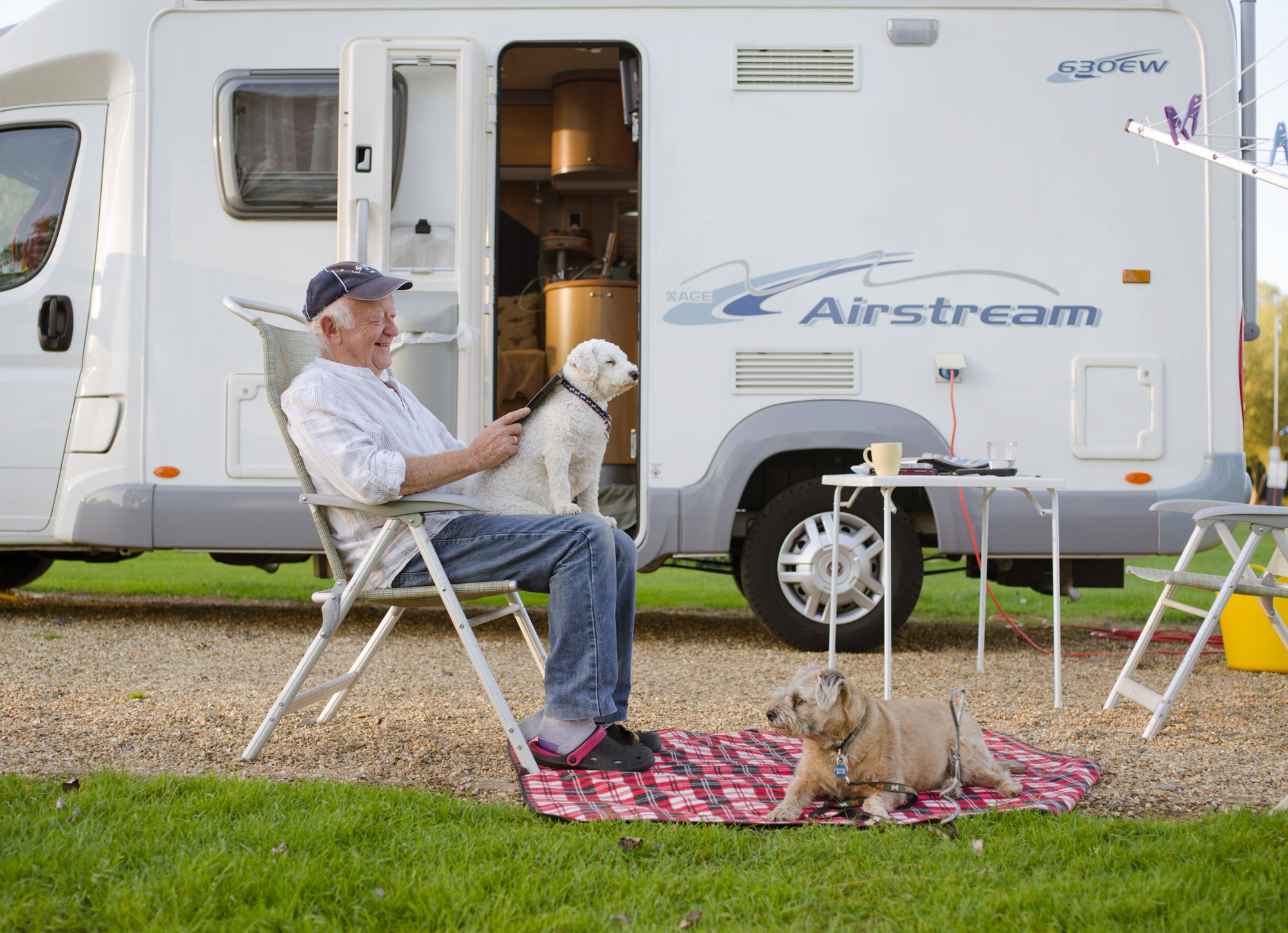 Dogs-Caravan-11.jpg