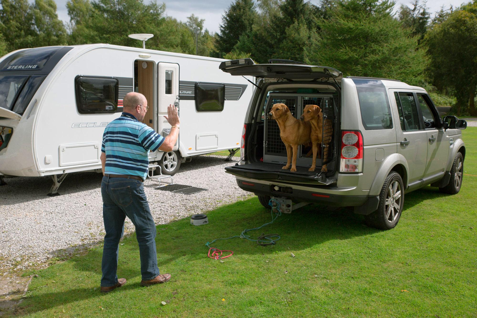 Dogs-Caravan-13.jpg