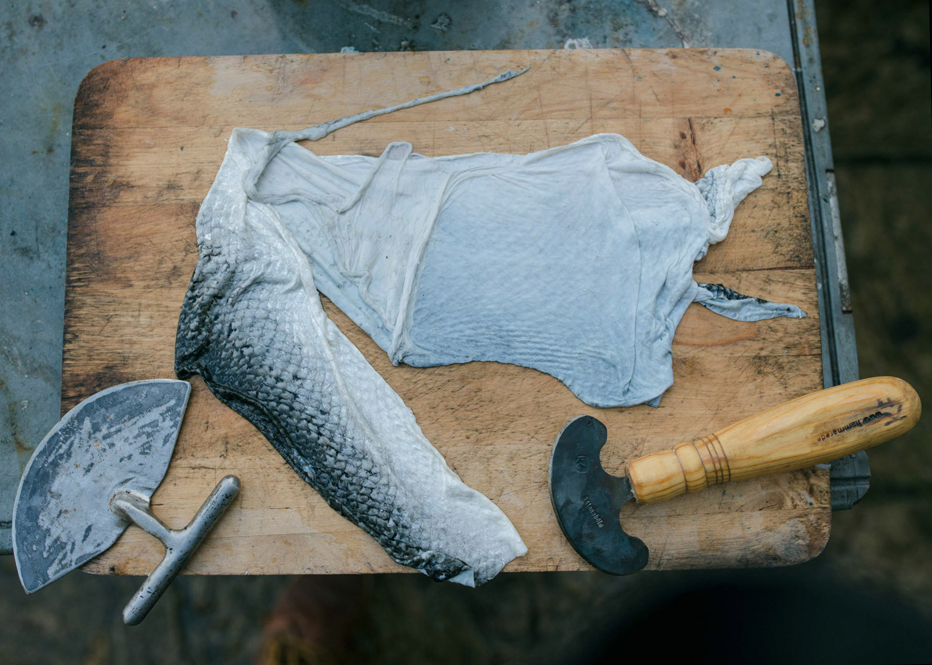 Artist Kari Furre uses an antique West Country, slate-bladed knife to scrape off the scales, then flips the skin over to pare away the layers of fat and fibres with a sharper curved  metal blade