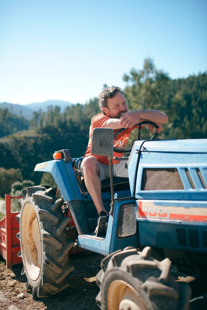 Tractor Portrait