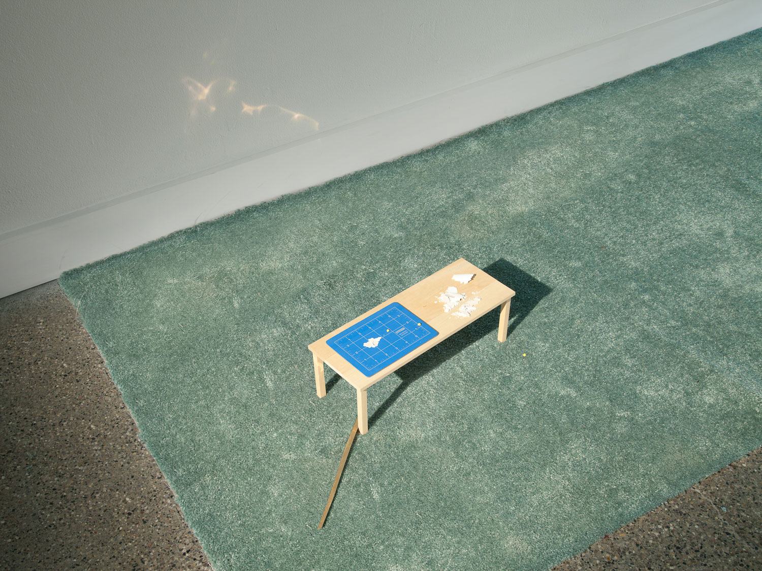Research  2011 144 x 36 x 6 in. carpet, wood, cutting mat, paint, gold, spotlight, book, praying mantis, tape, vanity fixture, LED lamps